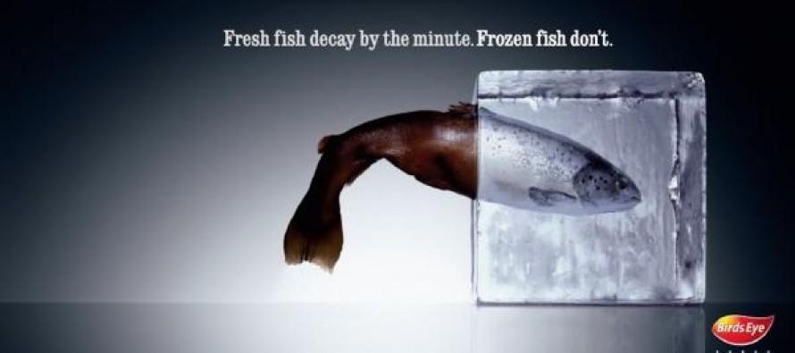Хранение рыбных продуктов
