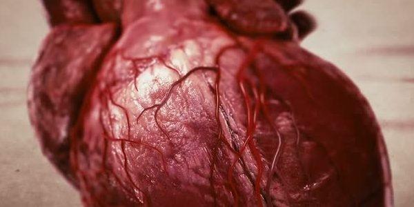 народные рецепты очищения кишечника