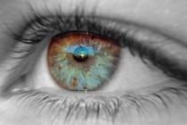 Глаз – хрупкий механизм