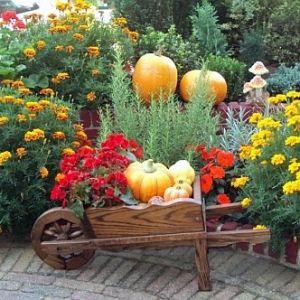 Строим овощехранилище