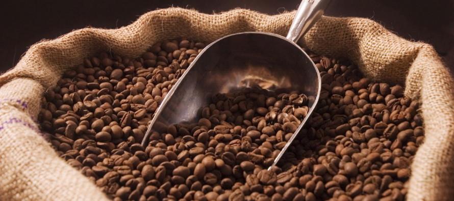 Главные cорта кофе!