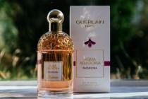 Выбираем качественную парфюмерию